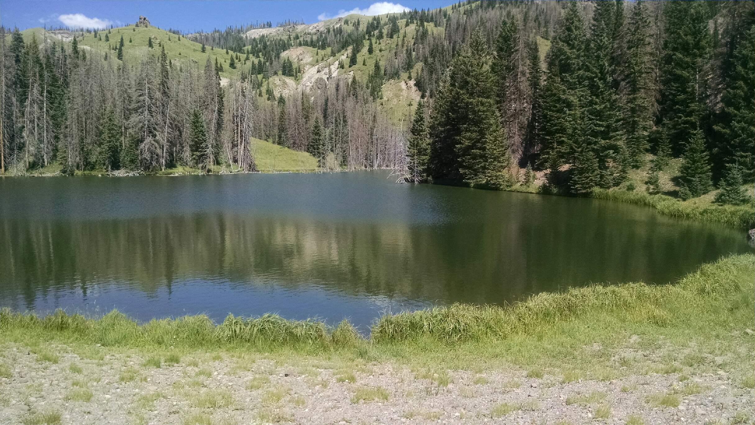 Oso Pardo pond